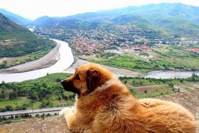 Мцхета грузия достопримечательности фото с описанием