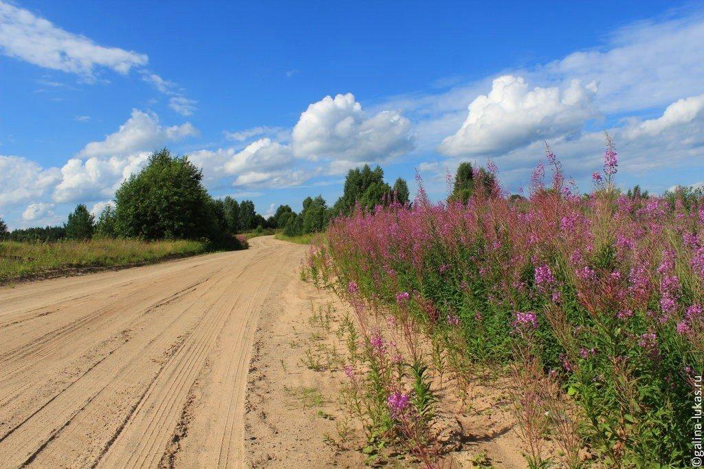 Портал о туризме в Вологодской области